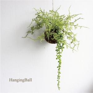 ハンギングボール ファーン&グリーンネックレス 多肉植物 造花 CT触媒|e-mintcafe