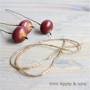 ミニアップルピック&ゴールドコイルワイヤー 雑貨 e-mintcafe