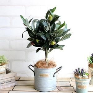 オリーブ H33 観葉植物 造花 CT触媒 フェイクグリーン|e-mintcafe