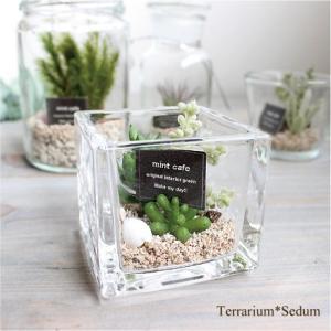 テラリウム セダム 多肉植物 フェイクグリーン 造花 インテリア|e-mintcafe