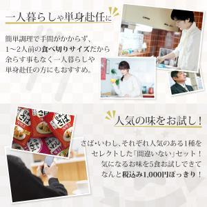 レトルト食品 和風 魚 惣菜 おかず 煮魚 宝幸 さば さんま 2種5食 ポッキリ セット メール便 e-monhiroba 06
