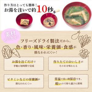 アマノフーズ フリーズドライ 味噌汁 うちのおみそ汁 スープ 選べる 30食 セット インスタント食品 キャッシュレス 還元 お歳暮 ギフト|e-monhiroba|10