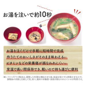アマノフーズ フリーズドライ 味噌汁 いつもの...の詳細画像2