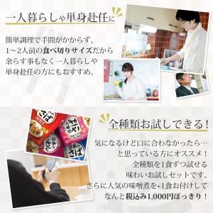 レトルト食品 おかず 惣菜 宝幸 煮魚 5種 お試し ポッキリ セット メール便 ポイント消化 e-monhiroba 06