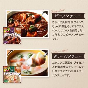 レトルト スープ シチュー 4種 詰め合わせ セット サンフーズ レトルト食品 メール便 ポイント消化 送料無 備蓄 非常食 e-monhiroba 03