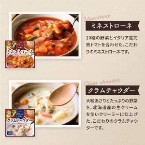 レトルト スープ シチュー 4種 詰め合わせ セット サンフーズ レトルト食品 メール便 ポイント消化 送料無 備蓄 非常食 e-monhiroba 04