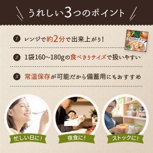 レトルト スープ シチュー 4種 詰め合わせ セット サンフーズ レトルト食品 メール便 ポイント消化 送料無 備蓄 非常食 e-monhiroba 06