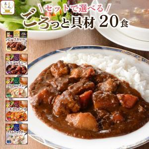 レトルト スープ シチュー 4種20食 詰め合わせ セット サンフーズ レトルト食品 惣菜 おかず 常温保存 備蓄 節分 バレンタイン ギフト|e-monhiroba