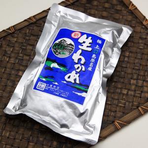 中屋商店の「塩わかめ」 400g 袋入|e-nagasaki