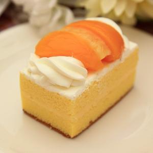 【長崎地元民 御用達】シースクリーム 5個入|e-nagasaki