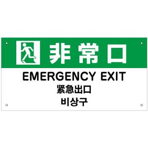 非常口 外国語看板 H20×W40cm 英語 中国語 韓国語|e-netsign