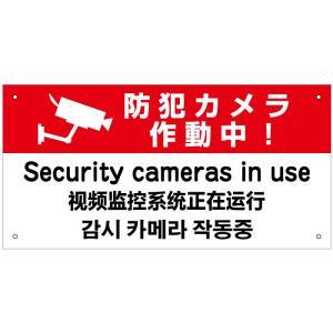 防犯カメラ作動中 外国語看板 H20×W40cm 英語 中国語 韓国語|e-netsign