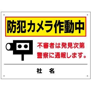 防犯カメラ作動中看板 T2-59|e-netsign