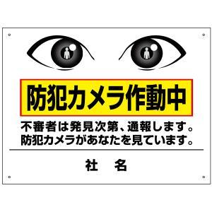 防犯カメラ作動中看板 T2-62|e-netsign