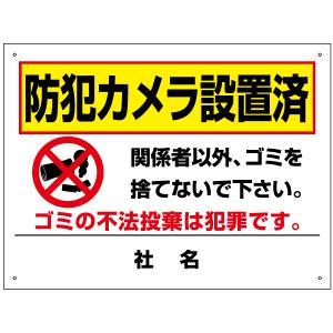 防犯カメラ設置済 看板 不法投棄禁止 関係者以外禁止 H45...