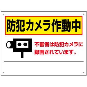 防犯カメラ作動中看板 T2-67|e-netsign