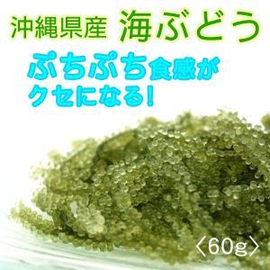 沖縄県産 海ぶどう 60g (常温発送)...