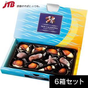 ニューカレドニア お土産 ニューカレドニア シーシェルチョコ12粒入 6箱セット チョコレート お菓子