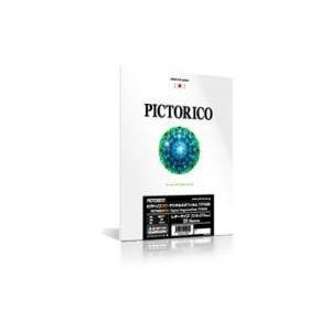 ピクトリコプロ・デジタルネガフィルムTPS100 レターサイズ(20枚入り) TPS100N-LTR/20|e-plaisir-shop
