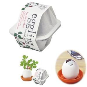 エッグリング エコフレンドリー ワイルドストロベリー  (EG-4805) 陶器のたまご容器の栽培セ...