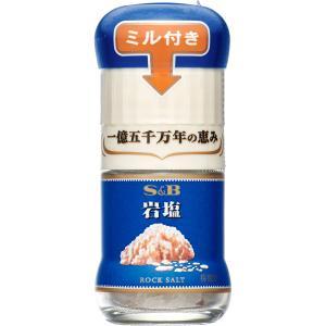 ミル付岩塩 40g S&B SB エスビー食品|e-sbfoods