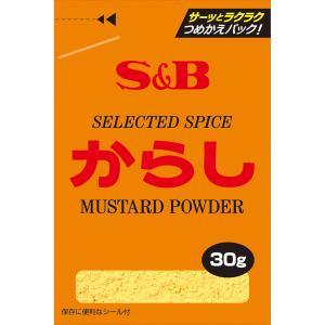 袋入りからし 30g S&B SB エスビー食品|e-sbfoods