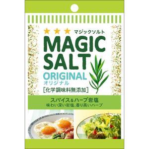 袋入りマジックソルト オリジナル 20g  S&B SB エスビー食品|e-sbfoods