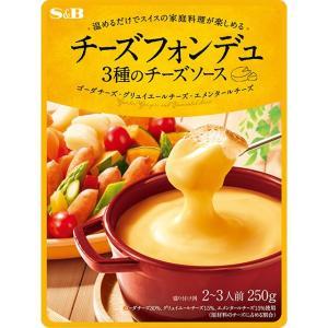 チーズフォンデュ 3種のチーズソース S&B SB エスビー食品|e-sbfoods