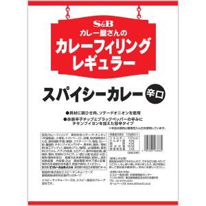 カレー屋さんのカレーフィリングレギュラースパイシーカレー2kg×6袋 S&B SB エスビー食品 e-sbfoods