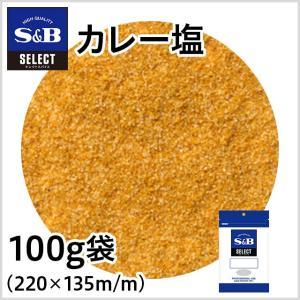 セレクトカレー塩 袋100g セレクトスパイス つけ塩 SB S&B エスビー|e-sbfoods
