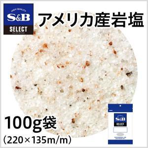 アメリカ産岩塩 袋100g S&B SB エスビー食品