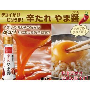 やまや やま醤60g(九州 お取り寄せ)|e-shokutaku|02