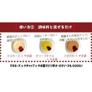 やまや やま醤60g(九州 お取り寄せ)|e-shokutaku|06