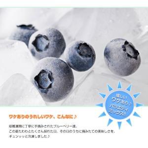 冷凍ブルーベリー 500g|e-shop-selection