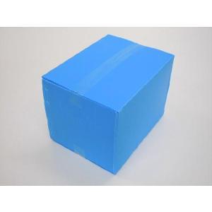 プラダン ケース B4タイプ ライトブルー 5箱セット