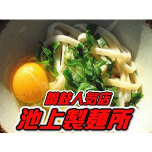 池上製麺所 るみばあちゃん さぬきうどん セット(麺約3食x3・うどん醤油1本(約10食分) 行列のできる讃岐うどん店 e-sjapan