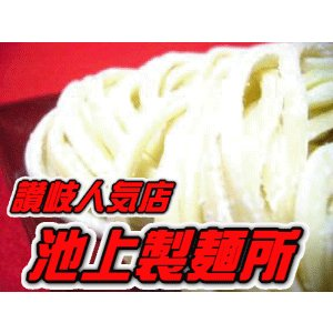 池上製麺所 るみばあちゃん さぬきうどん セット 約3食x3セット(約9食分) 行列できる店 小麦粉に秘訣 ※つゆ無  e-sjapan