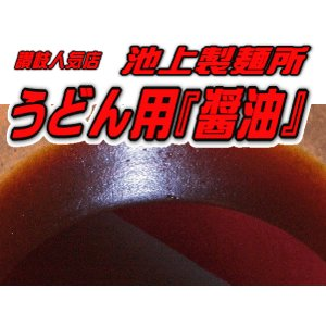 池上製麺所 るみばあちゃん うどん醤油 セット 2本(約20食分) さぬき讃岐饂飩有名店のこだわり ※つゆのみ麺なし e-sjapan
