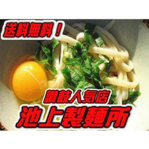 お試しセット 池上製麺所 るみばあちゃん さぬきうどん ミニセット 送料無料 (麺約3食x1・うどん醤油1本(約10食分) 行列のできる讃岐うどん店 e-sjapan