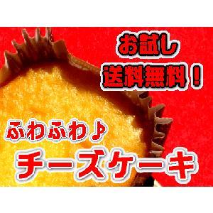 ポイント10倍〕『匠』のこだわり!ふわふわのチーズケーキ(プレーン)お試しセット4個〔メール便商品〕|e-sjapan