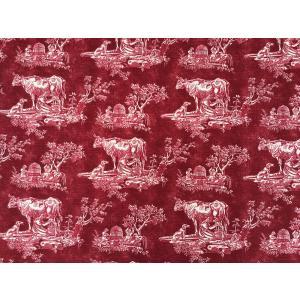 USA輸入生地・インテリアファブリック・カルトナージュ MAYENNE  P/KAUFMANN|e-son-fabric