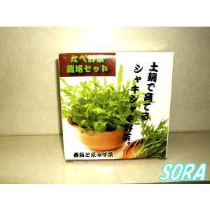 なべ野菜栽培セット|e-sora