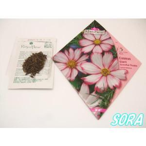 ロイヤルフルール コスモス Sensation Picotee|e-sora