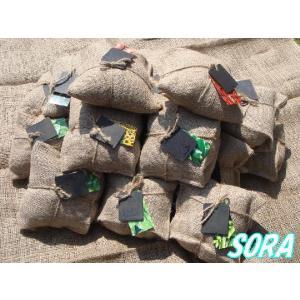 ジュートプラントプレイン 19種セット|e-sora