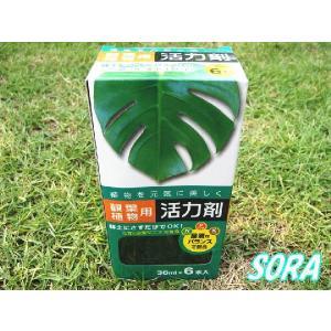 活力剤 観葉植物用 36ml×6本入|e-sora