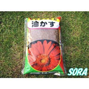 ミニ 油かす 600g|e-sora