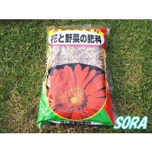 ミニ 花と野菜の肥料 600g|e-sora