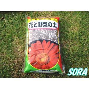 ミニ 花と野菜の土 1.3L|e-sora