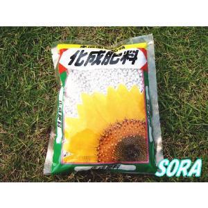 ミニ 化成肥料 350g|e-sora