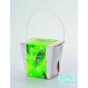ベジコンテナ 緑のカーテン ゴーヤ|e-sora